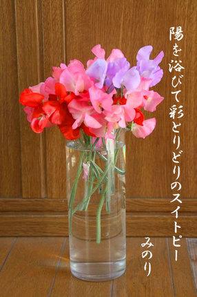 花-173.jpg