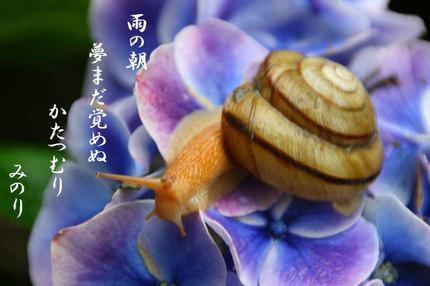 かたつむ~~り-071.jpg