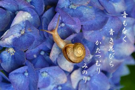 かたつむり~-026.jpg