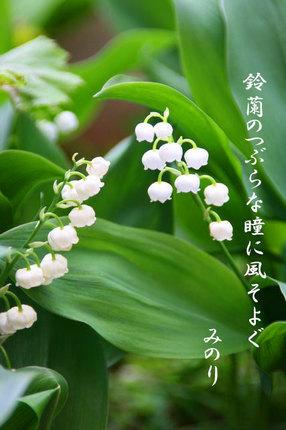 スズラン~-068.jpg