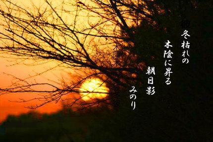 日の出-019.jpg