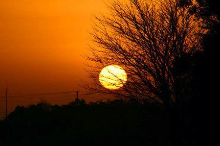 日の出-031.jpg