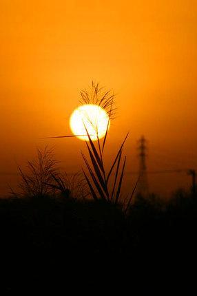 日の出-048.jpg