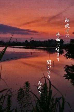 朝焼け-073~~.jpg