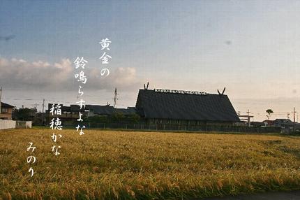 朝焼け-188~~.jpg