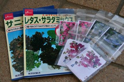 木の実-038^^.jpg