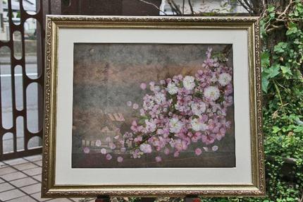桜 -020~~.jpg