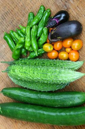 野菜-~~019.jpg