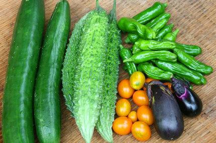 野菜-~~029.jpg